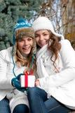 Jumelles gaies de filles, en stationnement Image stock