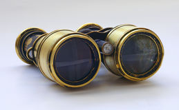 Jumelles n1 de mer Image libre de droits