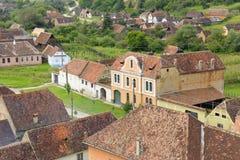 Jument de Copsa, la Transylvanie, Roumanie Photographie stock