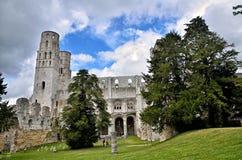 Jumieges修道院,法国废墟  库存图片