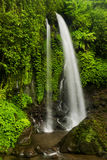 Jumog瀑布 库存照片