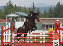 Jump. Young rider and horse clearing jump in local equestrian competition Stock Image