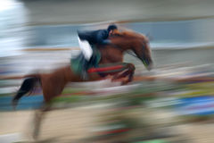 Jump a horse through the barrier Stock Images