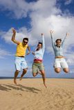 Jump of joy Royalty Free Stock Image