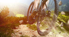 Jump Mountainbike Royalty Free Stock Image
