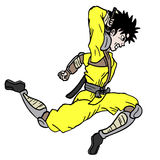 Jump ninja Royalty Free Stock Photos