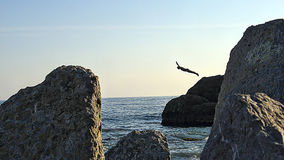 Jump off a cliff. Beautiful jump into the water Stock Photography