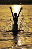 Jump out of the water Stock Image