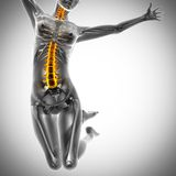 Jump woman radiography scan image Stock Image