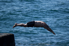 Jumped off the pier into the sea Stock Photos