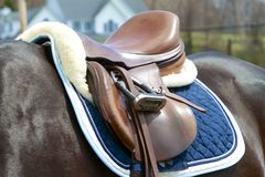 Jumper Saddle. Close-up of a fine leather jumping saddle with sheepskin and blue pad. Dark brown, shiny horse stock photos