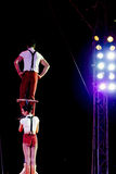 Jumping acrobats at circus Stock Photos
