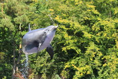 Jumping bottlenose dolphin. The jumping bottlenose dolphin over the water surface stock image
