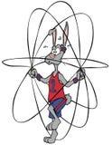Jumping Bunny Royalty Free Stock Photos