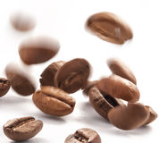 Jumping coffee beans. Flying coffee beans on a white background, close-up Stock Images