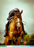 Jumping competition. Horseman at jumping competition jump an obstacle with is horse Royalty Free Stock Photo