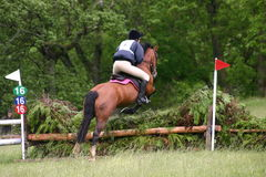 Jumping x country. Pony and rider jumping x country Stock Photography