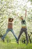 Jumping Couple in Garden Royalty Free Stock Photography