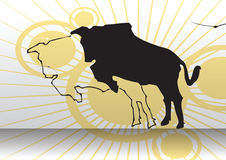 Jumping cow over sunshine Stock Photos