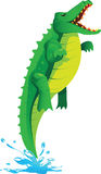 Jumping crocodile. Crocodile cartoon jump from water Stock Image