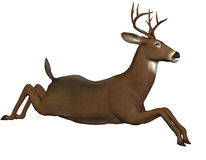 Jumping deer. 3D rendering of a leaping deer Stock Photos
