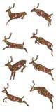 Jumping deer Christmas item set. Illustration design drawing jumping deer element Christmas item decor set  white color background Royalty Free Stock Photos