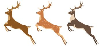 Set of deer stock photography