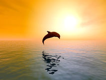Jumping Dolphin. Dolphins are marine mammals that are closely related to whales and porpoises Stock Photos