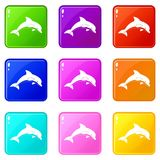 Jumping dolphin icons 9 set. Jumping dolphin icons of 9 color set isolated vector illustration Stock Photos