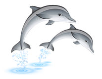 Jumping dolphins. Two jumping dolphins over white vector illustration