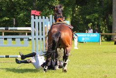 Jumping fall. Jumping consists in linking an obstacle course without fault. The tests are intended to demonstrate the horse's power, its address, its speed and Stock Photo