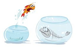 Jumping fish. Fish  jumping out of the water vector illustration Stock Photos