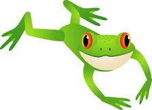 Jumping frog Stock Photography