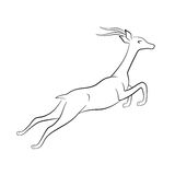 Jumping gazelle silhouette. Jumping gazelle vector silhouette outlines Stock Photos