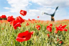 Jumping girl in poppy field Royalty Free Stock Image