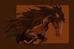 Jumping horse Royalty Free Stock Photos