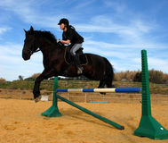 Jumping horse. Young teenager and her friend black stallion: training of jumping Stock Image