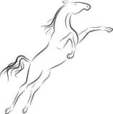 Jumping horse Royalty Free Stock Images