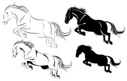 Jumping horse. Vector illustration of jumping horse black and white Stock Image