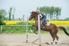 Jumping with horse Royalty Free Stock Image
