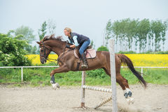Jumping with horse Royalty Free Stock Images