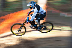 Jumping Mountain Biker. A male downhill Mountain Biker goes down the hill amongst the trees and over the jump stock photos