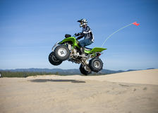 Jumping quad in dunes Royalty Free Stock Photo