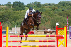 Jumping qualifier. Horse racing. Royalty Free Stock Image