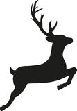 Jumping reindeer. Silhouette of a jumping reindeer Royalty Free Stock Photos