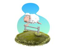 Jumping sheep Stock Photography