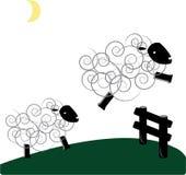 Jumping Sheep Stock Image