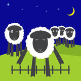Jumping sheep. One cute sheep jumping over low fence with eyes screwed up and four sheep standing on hills and watching it, dark navy colored sky, blue stars and Stock Photo