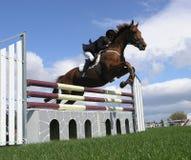jumping show Στοκ Εικόνα