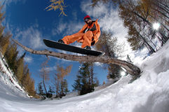 Jumping snowboarder. Snowboarder jumping over tree on a sunny day with blue sky in Austria stock photos